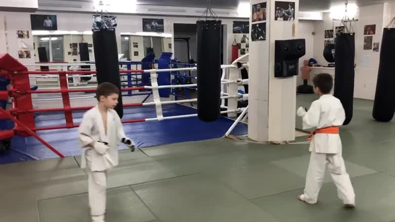 Персональные тренировки в СК Eremenko' Dojo