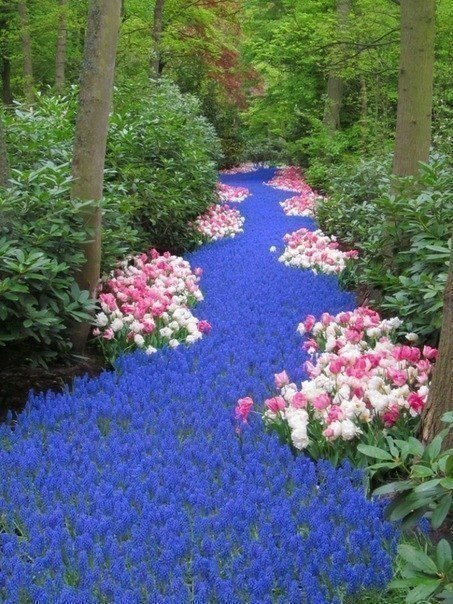 Река из цветов
