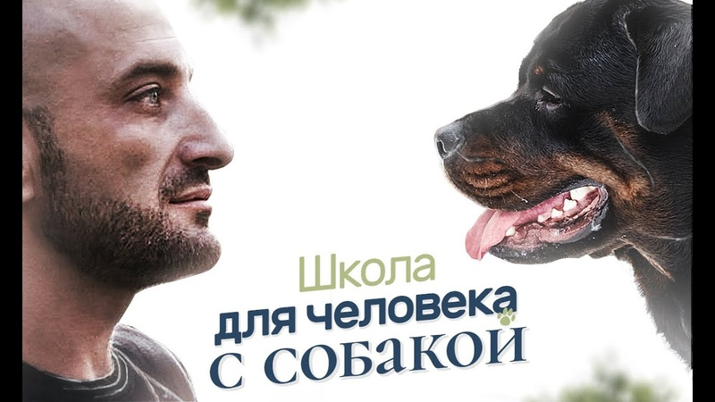 Школа Антуана Наджаряна Искусство общения с собакой От сердца к сердцу (1 поток)