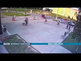 На видео видно, как в Костюковичах ворона похитила деньги из рюкзака (150 рублей)!