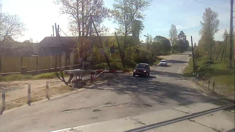От станции Толмачёво через реку Луга 25 05 2020