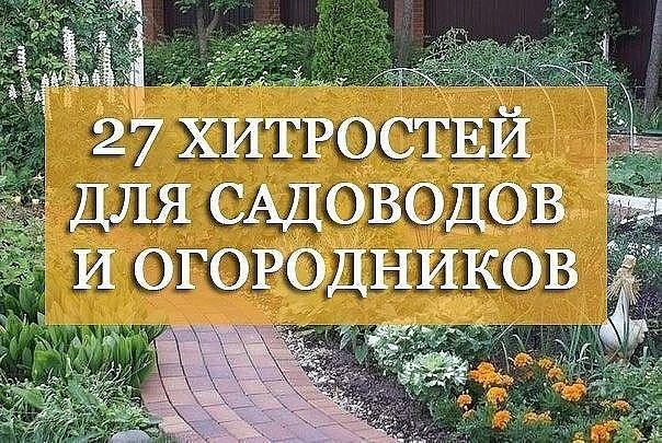 27 хитростей для садоводов и огородников: